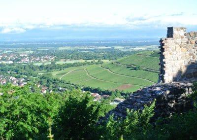 von der Burg Badenweiler in die Rheinebene