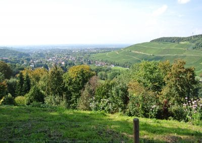 Niederweiler