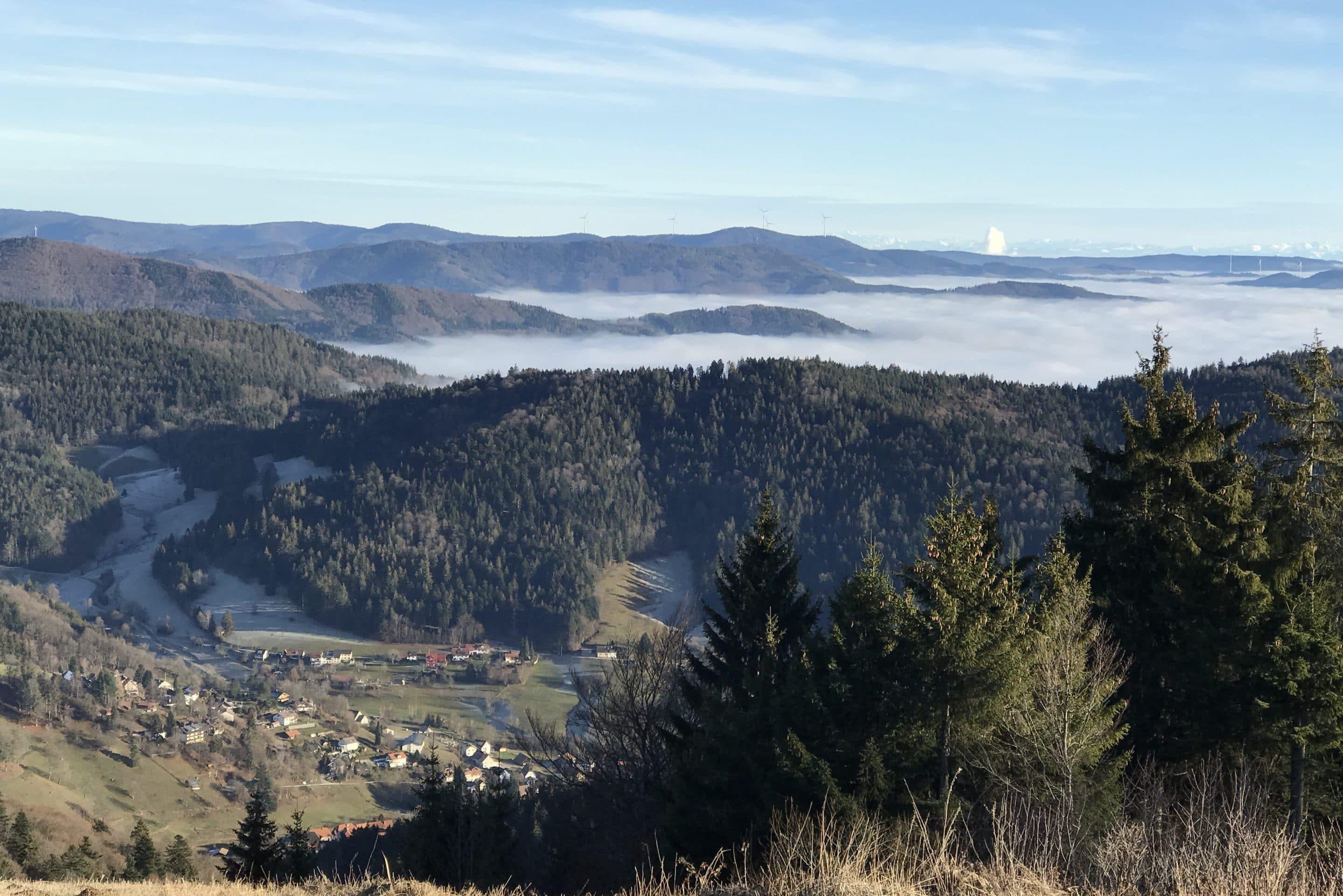 Inversion-Wetterlage im Winter. Blich vom Blauen nach Südosten. Das Rheintal unter einer Nebeldecke..